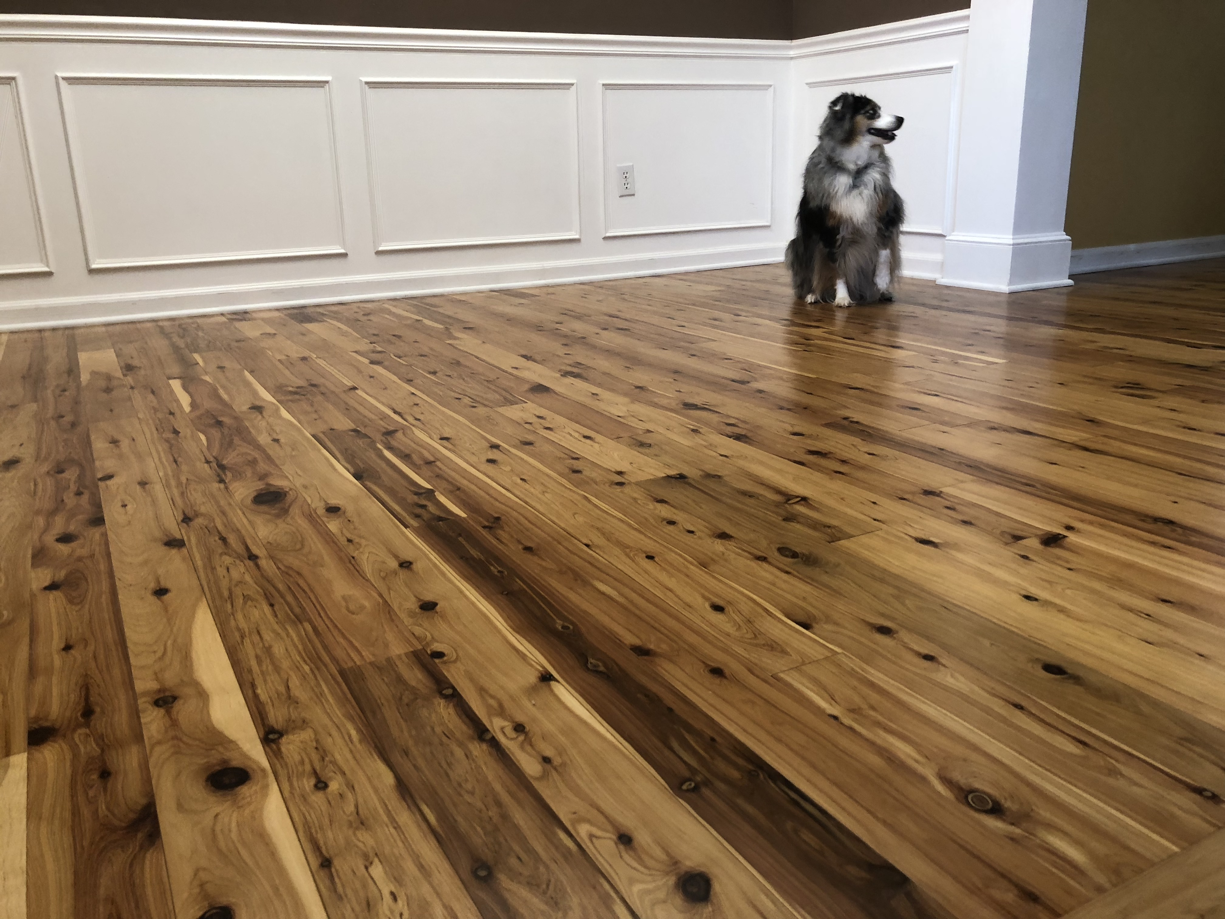 Australian Cypress Hardwood Floors, Australian Cypress Laminate Flooring