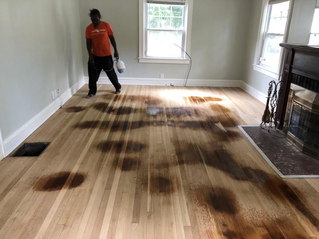 Spot Treating Pet Stains On Hardwood Floors Hardwood