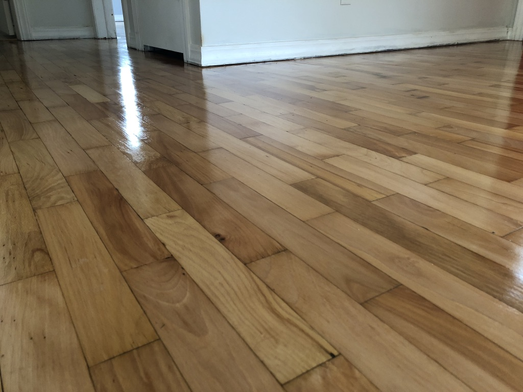 Staining Maple Hardwood Floors Oil Vs Water Based Polyurethane